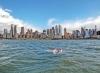 Desafío Isla Manhattan, una de las carreras de la Triple Corona