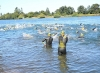 Tolten Wolf International Open Water Marathon 2020