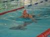 La natación máster es perseverancia, salud y cambia vidas