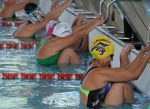 El circuito máster de natación cerró en Temuco con el 15º Campeonato Nacional